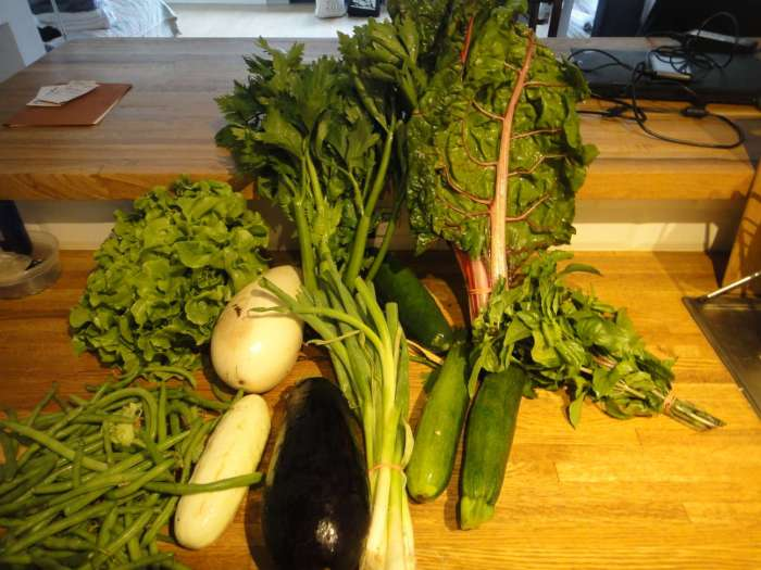 fresh vegetables from the farm