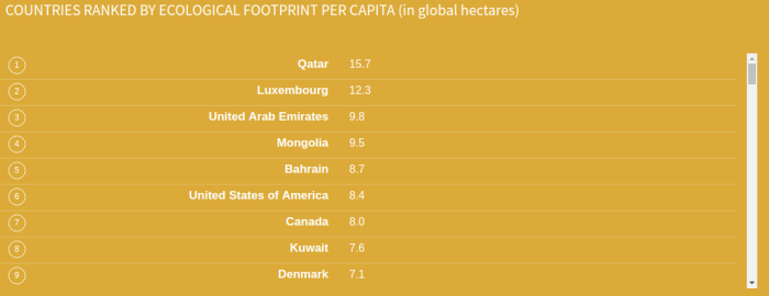 The average American ecological footprint