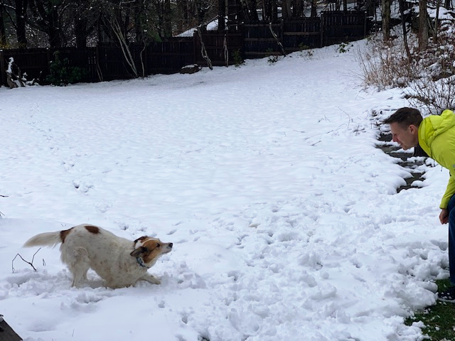 Joshua Spodek and Rosie in the snow