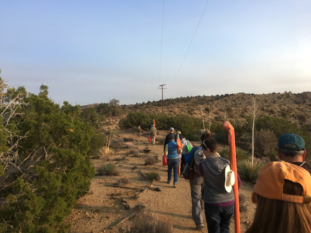 Volunteer leaders hike out into Puma Canyon to test-drive the survey protocol. (Photo by Jeremy Yoder.)