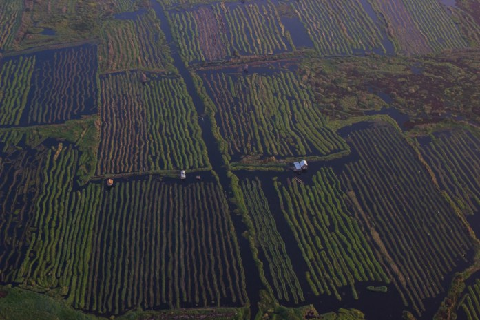 The floating gardens of Inle Lake with a hut in Myanmar from a hot air balloon.