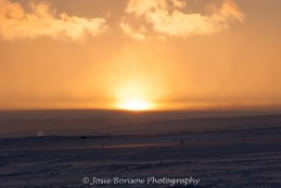 Arctic Sunsets (2011) Photo by Josie B