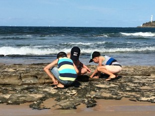 Exploring the rock pools