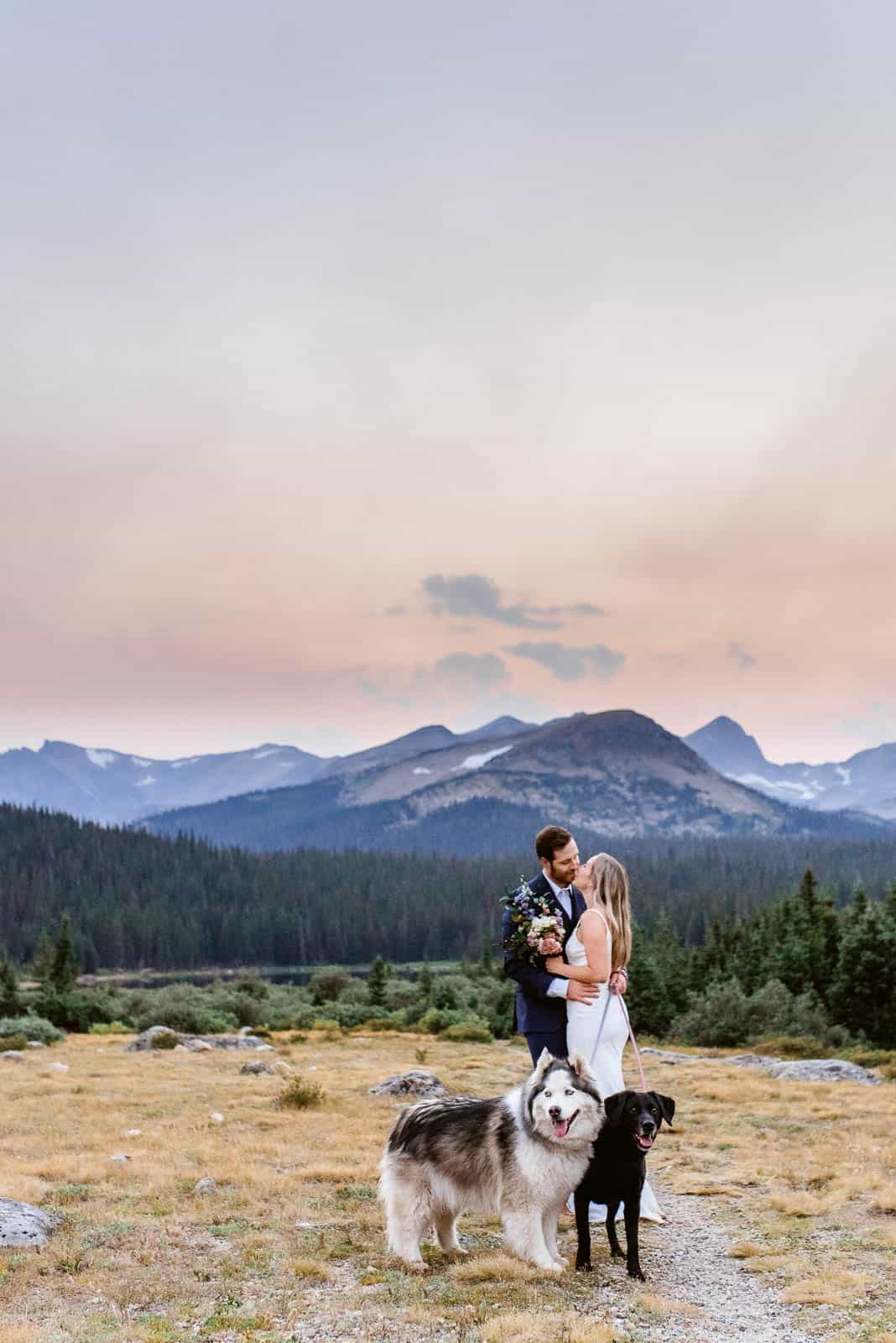 Eloping with pets   Josie V Photography