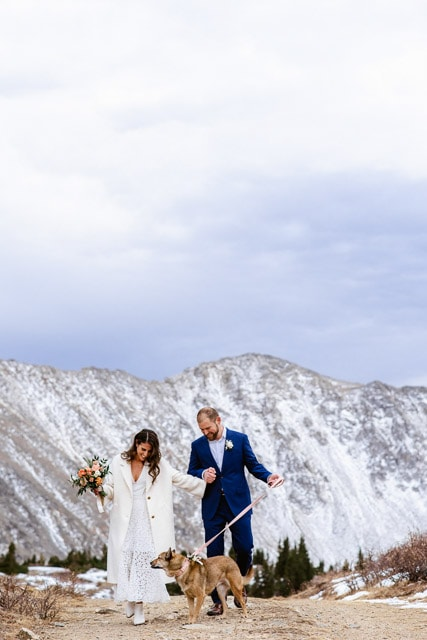 Couple walks with their dog during their mountain top Colorado elopement. Deciding between an elopement vs wedding? This photo gives you inspiration to take your elopement ceremony to the tops of the mountains in Colorado.