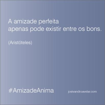 #AmizadeAnima 13