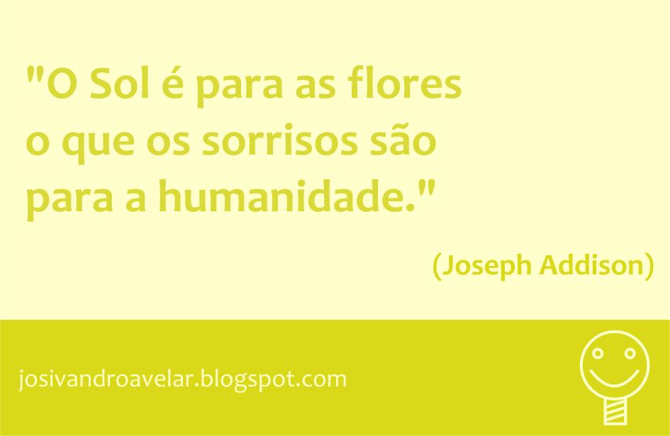 O Sol é para as flores o que os sorrisos são para a humanidade. Frase de Joseph Addison.