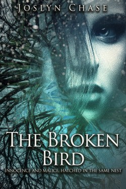 The Broken Bird cover