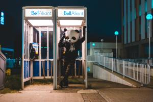 Panda making a phone call