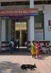 DSC_0088-Bangalore Bull Temple