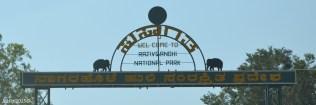 DSC_0193-RajivGhandi National Park