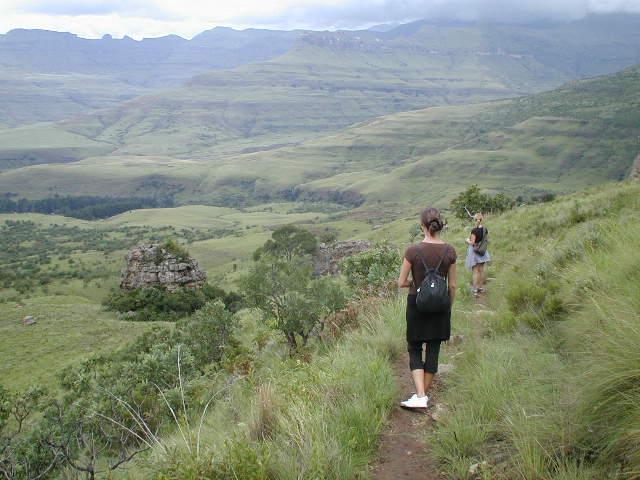 Drakensberge