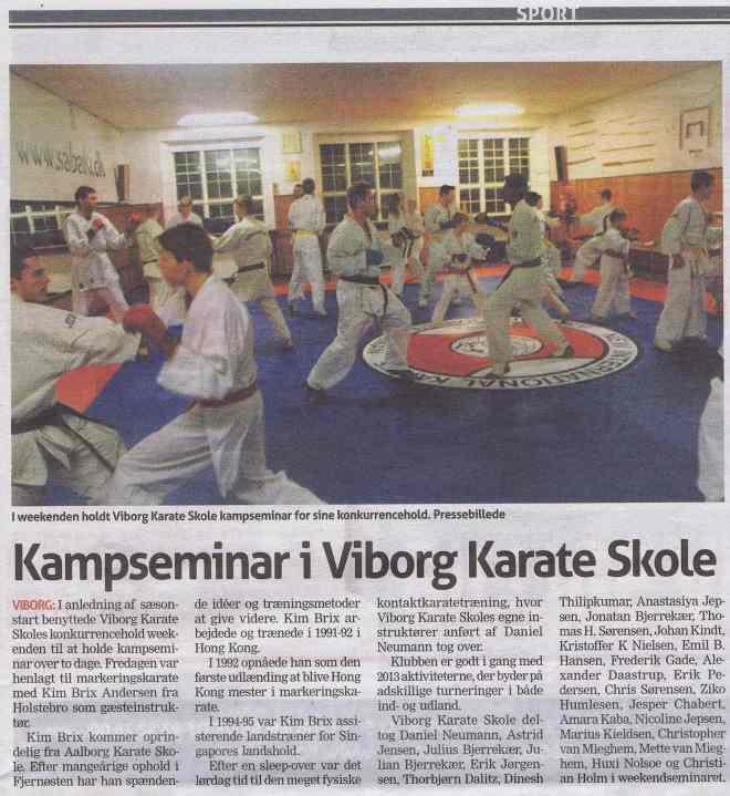 Kampseminar-i-Viborg-Karate-Skole1