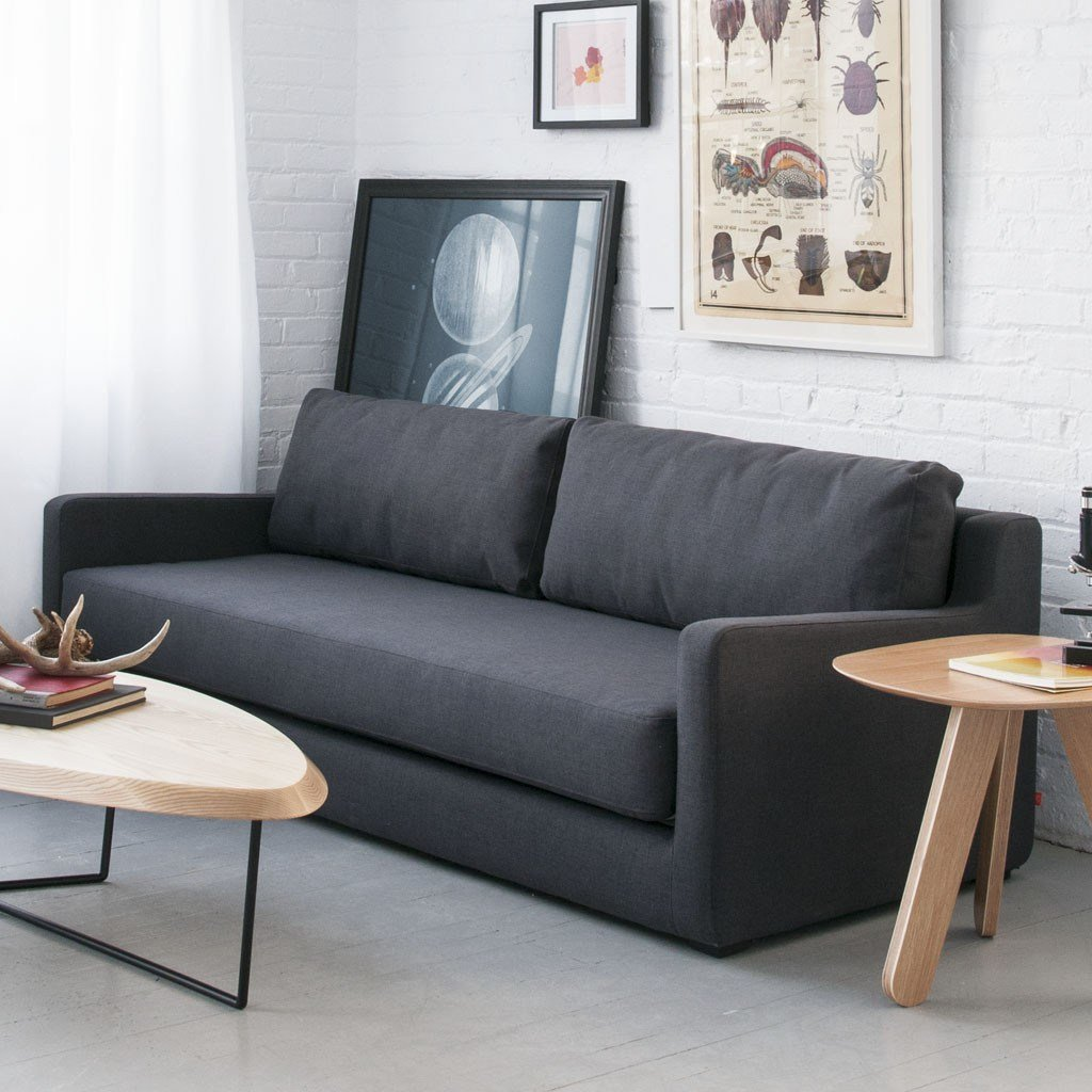 Best Modern Sofa Bed And Contemporary House To Provide Comfort With Pictures