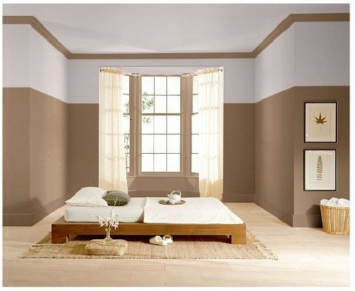 Best Two Tone Paint Colors For Master Bedroom Inspiration For With Pictures