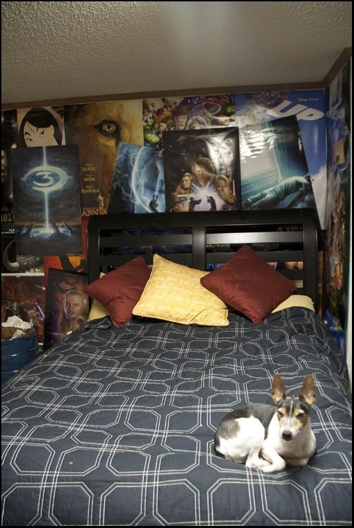 Best 25 Nerd Bedroom Ideas On Pinterest Cute Room Ideas With Pictures