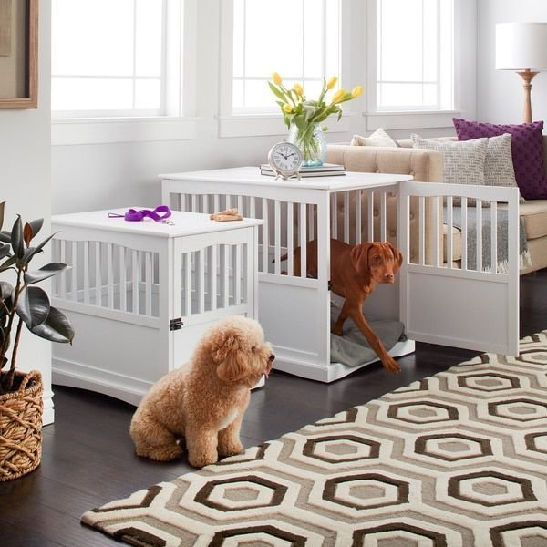 Best Incorporate Accommodations For Your Dog Into The Decor Of With Pictures