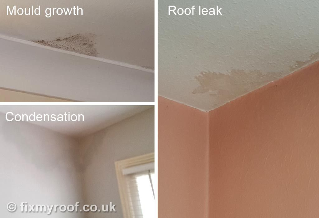 Best Stain On Ceiling Condensation Mould Leak Condensation With Pictures