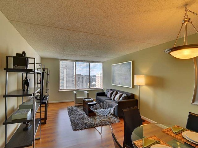 Best Studio One Two Bedroom Apartments In Arlington Va With Pictures