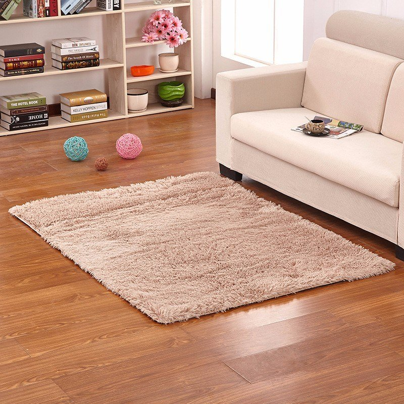Best 50X80Cm Bedroom Living Room Soft Rug Shaggy Anti Slip With Pictures