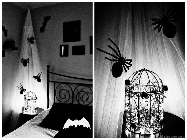 Best Creepy Crawly Bedroom Spiders Bats With Pictures