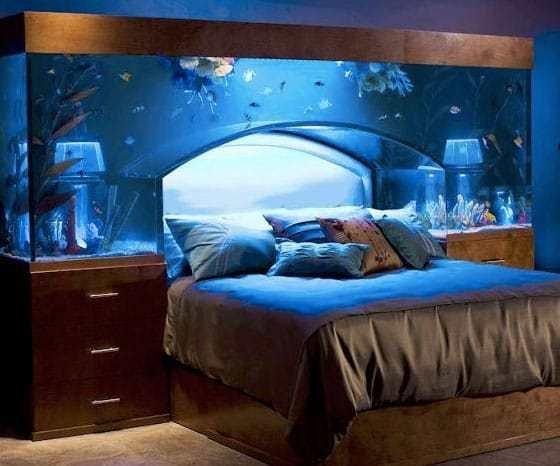 Best Benefits Of A Fish Tank And The Science Feng Shui Behind It With Pictures