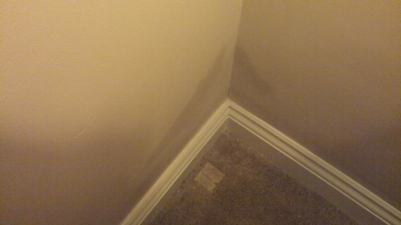 Best Damp On Internal Bedroom Walls Www Indiepedia Org With Pictures