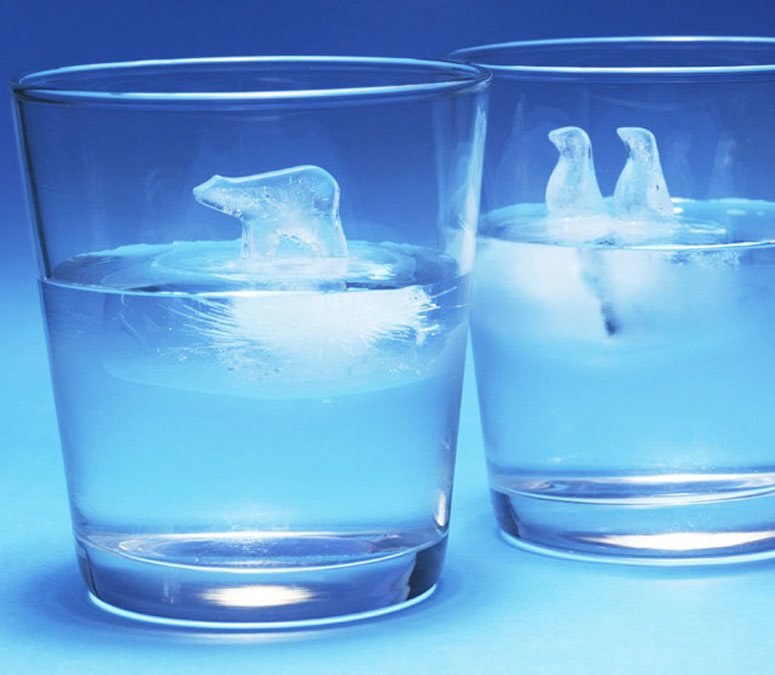 Best Polar Ice Cube Molds The Green Head With Pictures