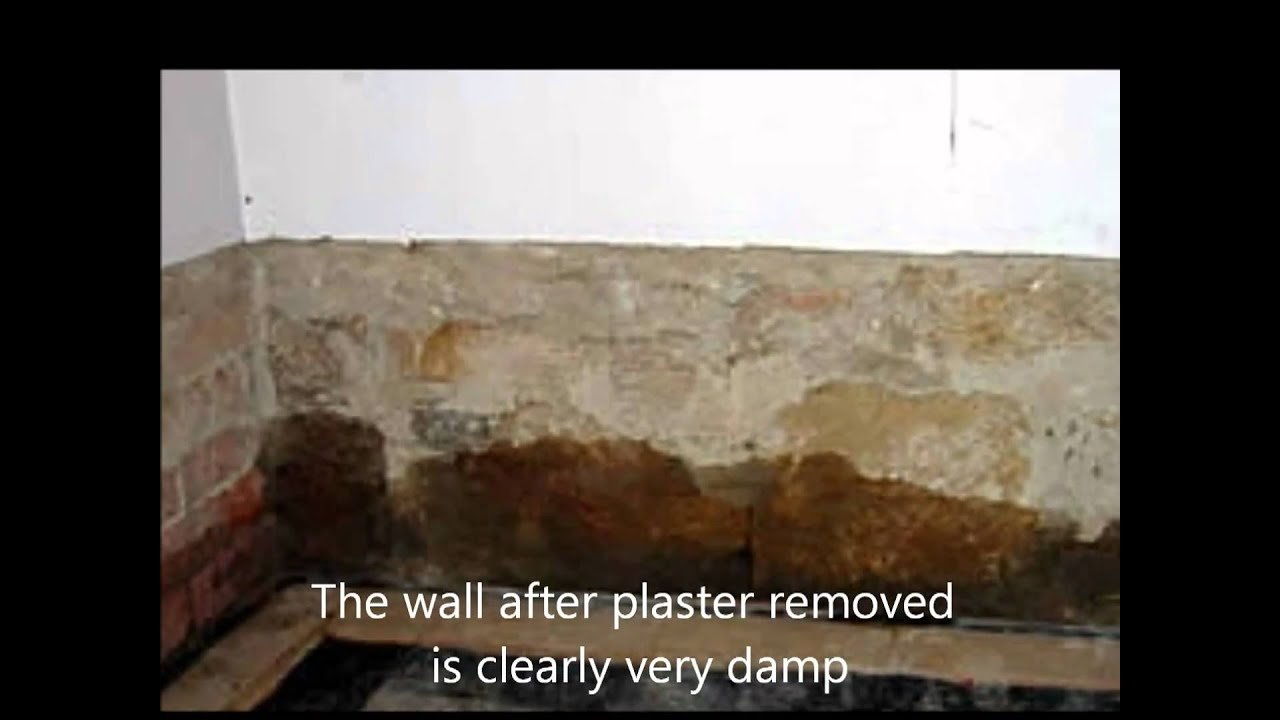 Best Rising Damp Causes And Cure Youtube With Pictures