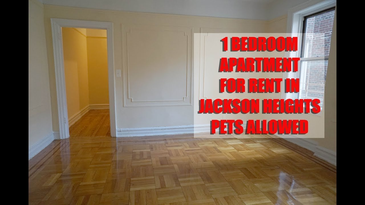 Best 1 Bedroom Apartment For Rent In Jackson Heights Queens With Pictures