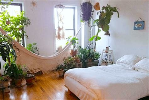 Best 10 Plants For Your Bedroom That Will Improve Sleep Quality With Pictures