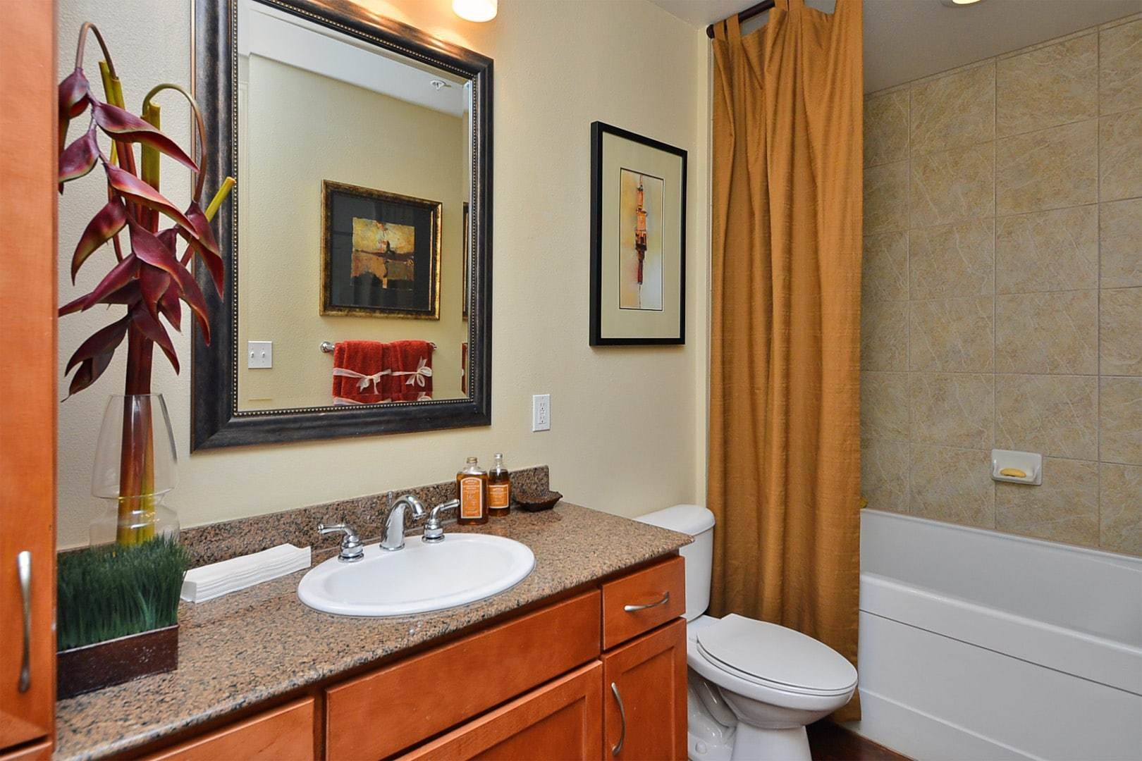Best Two Bedroom Apartment For Rent In Houston Texas With Pictures