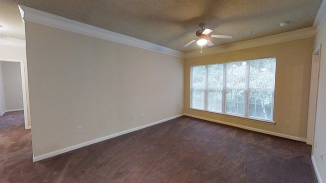 Best Wyndham Pointe Apartments Apartments Columbia Sc With Pictures