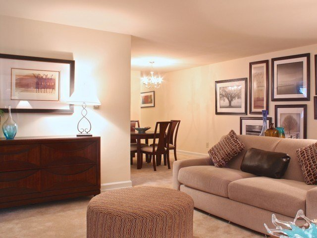 Best 3 Bedroom Apartments For Rent In Arlington Va Page 4 With Pictures