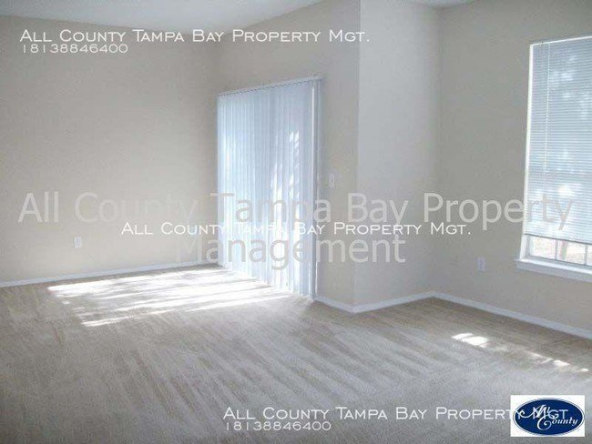 Best 1 Bedroom In Temple Terrace Fl 33617 Condo For Rent In With Pictures