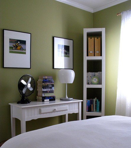 Best Moss Green Paint Colors Transitional Bedroom Behr With Pictures