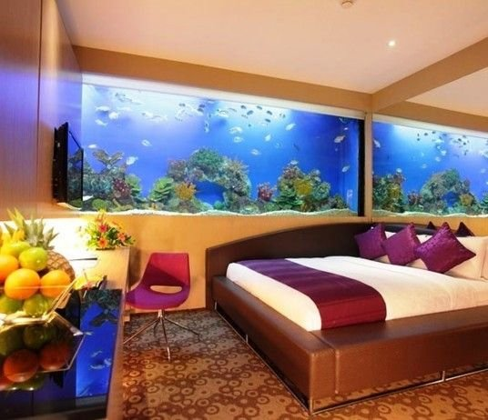 Best 26 Best Images About Aquarium Design On Pinterest Coffee With Pictures