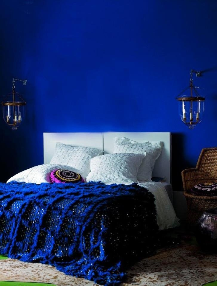 Best 17 Best Ideas About Royal Blue Walls On Pinterest Royal Blue Bedrooms Royal Blue Colour And With Pictures