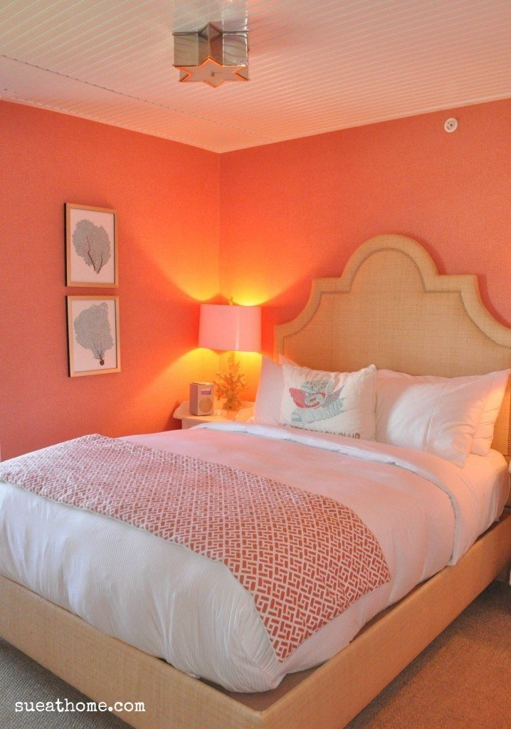 Best 25 Best Ideas About Coral Walls On Pinterest Coral With Pictures