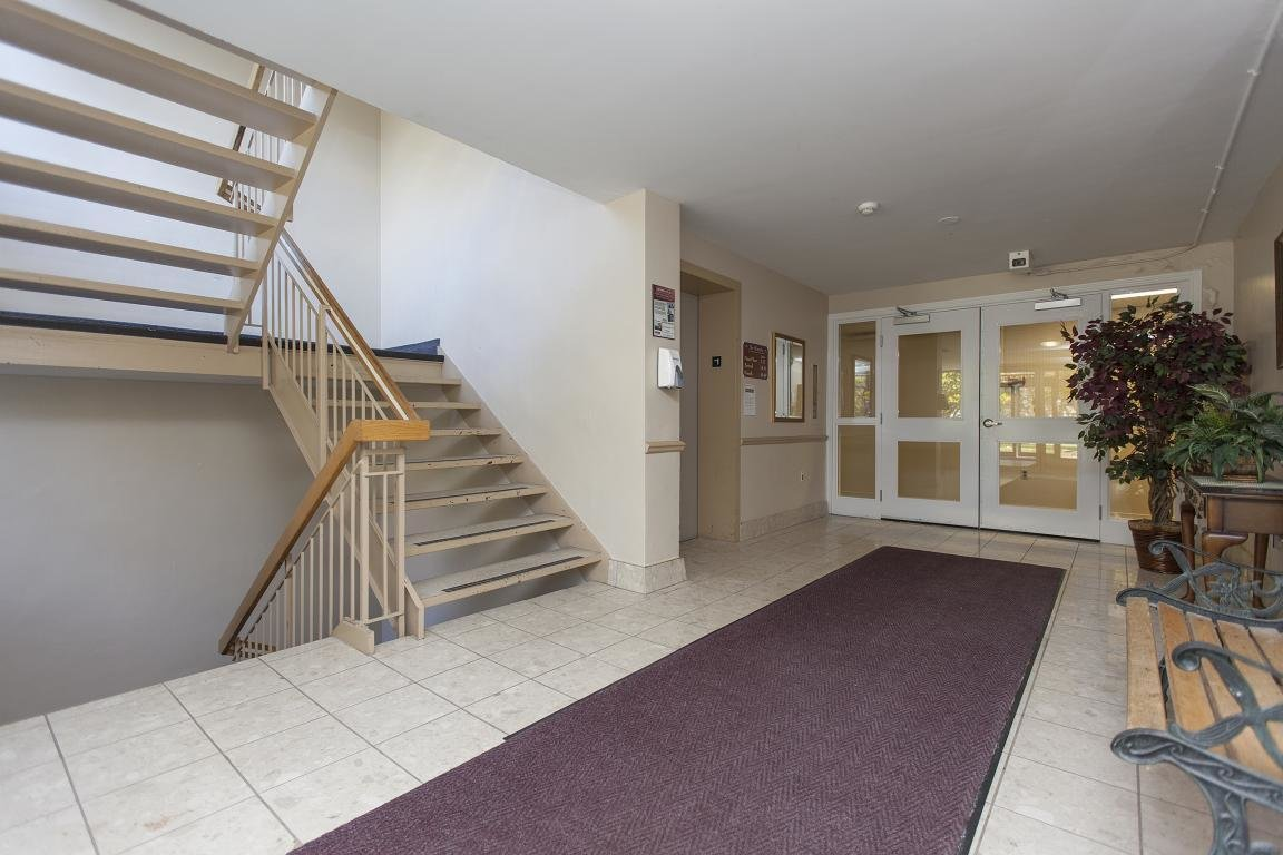 Best Kingston Apartment Photos And Files Gallery Rentboard Ca With Pictures