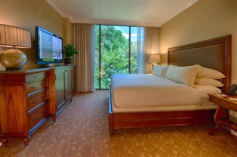 Best Accommodations With Pictures