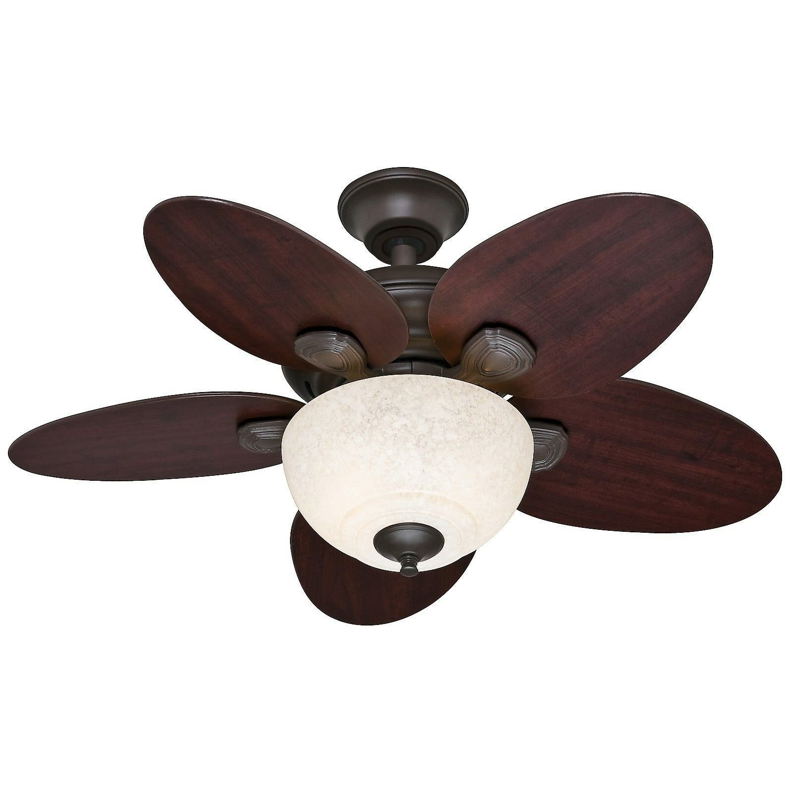 Best Hunter 34 Casual Small Room Ceiling Fan New Bronze With Pictures