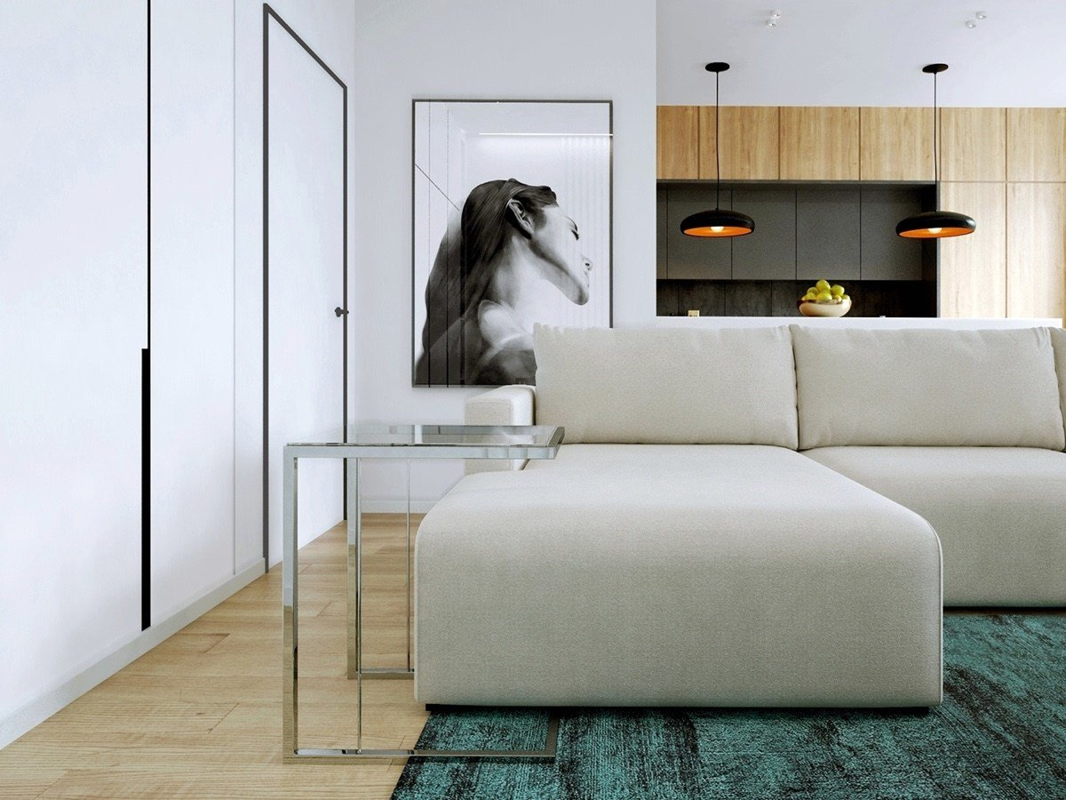 Best Relaxing Color Schemes In 3 Efficient Single Bedroom Apartments With Floor Plans With Pictures