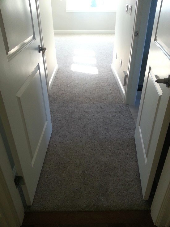 Best Global Carpets Hardwood Flooring Area Rugs – Carpeted With Pictures
