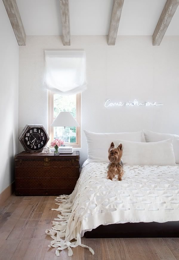 Best Decor Trend Neon Lights With Pictures