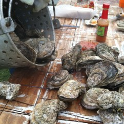 Kitchen Dish Towels Ss Work Tables A November Oyster Roast With Friends | Journey Of The ...