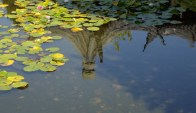 Chinese Garden Reflection