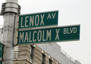 Malcolm_X_Blvd_street_sign