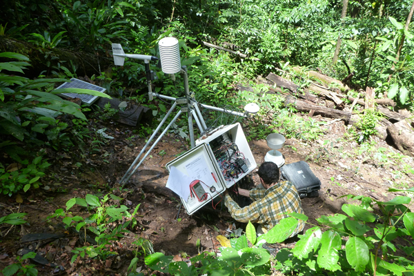 Installation d'une station micro météorologique en forêt amazonienne (Guyane) © Bruno Hérault