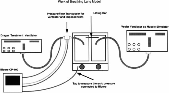 Exacerbation of Acute Pulmonary Edema During Assisted
